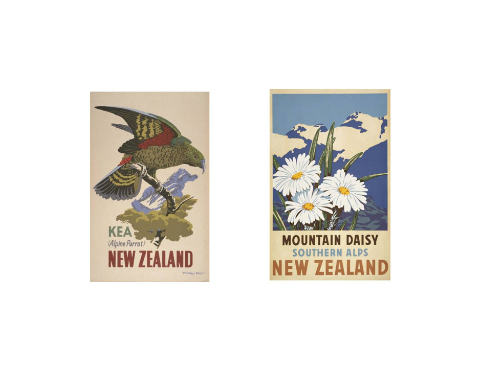 guide to new zealand