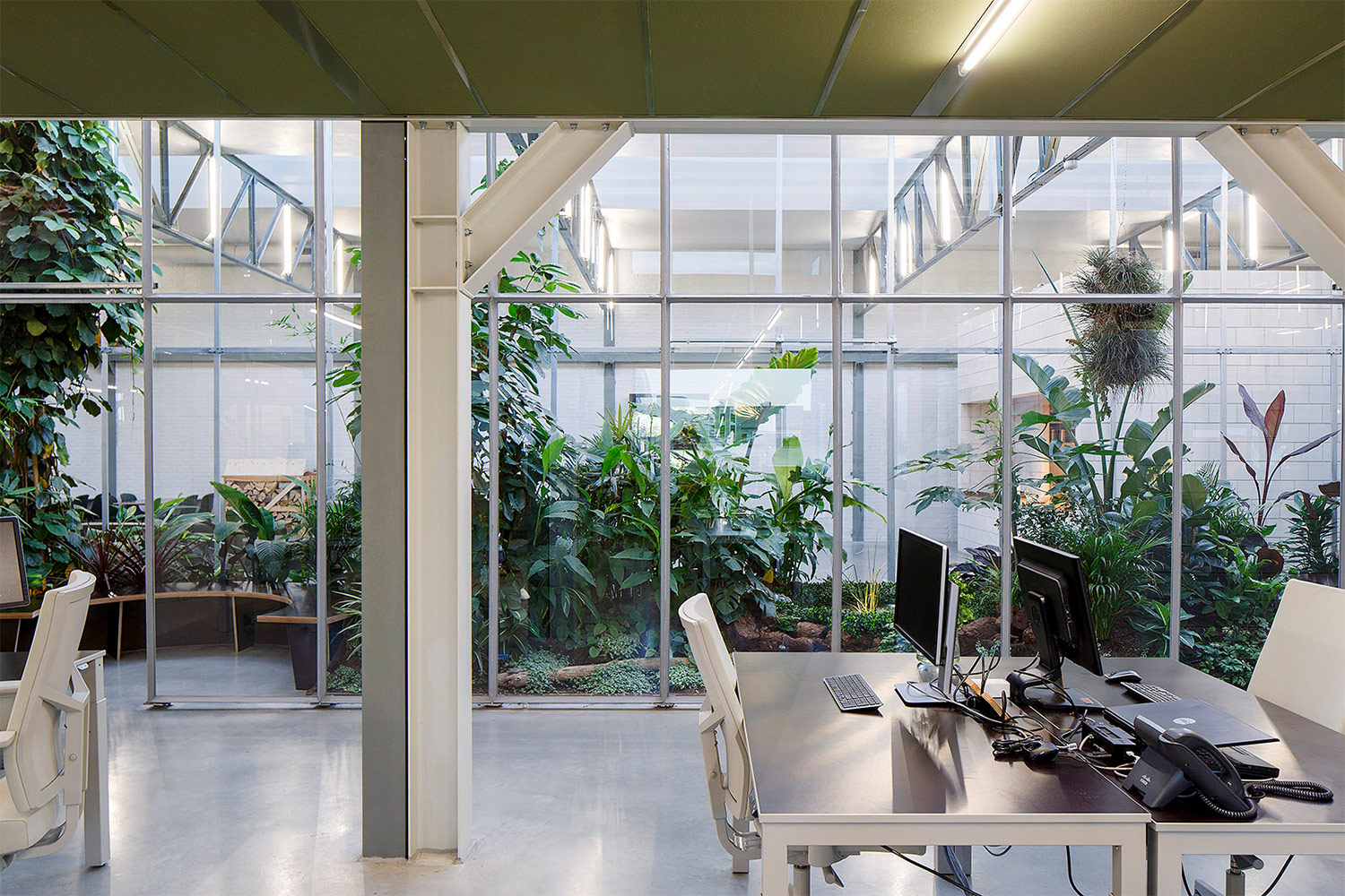 A Tropical Paradise In The Middle Of An Office | Joolz HQ In Amsterdam