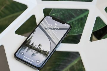 iPhone X OLED Panel