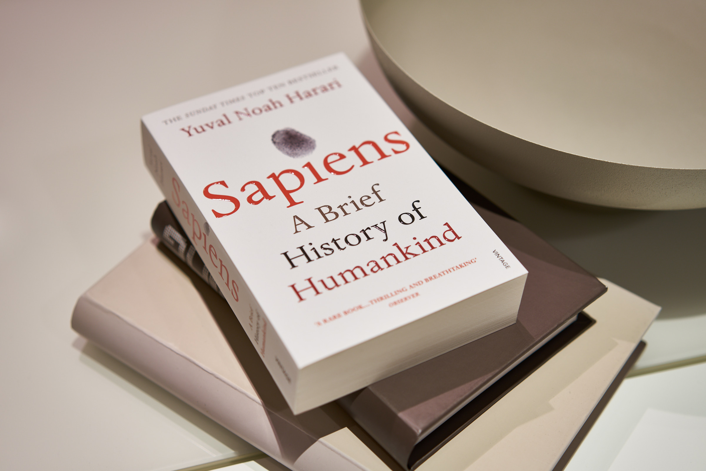 Sapiens Book Review - HEY GENTS